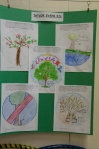 Guelph Loves Trees School Challenge 2011 - Taylor Evans P.S.